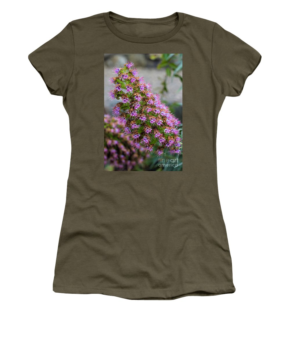 Flowers Women's T-Shirt featuring the photograph Reaching by Suzanne Luft