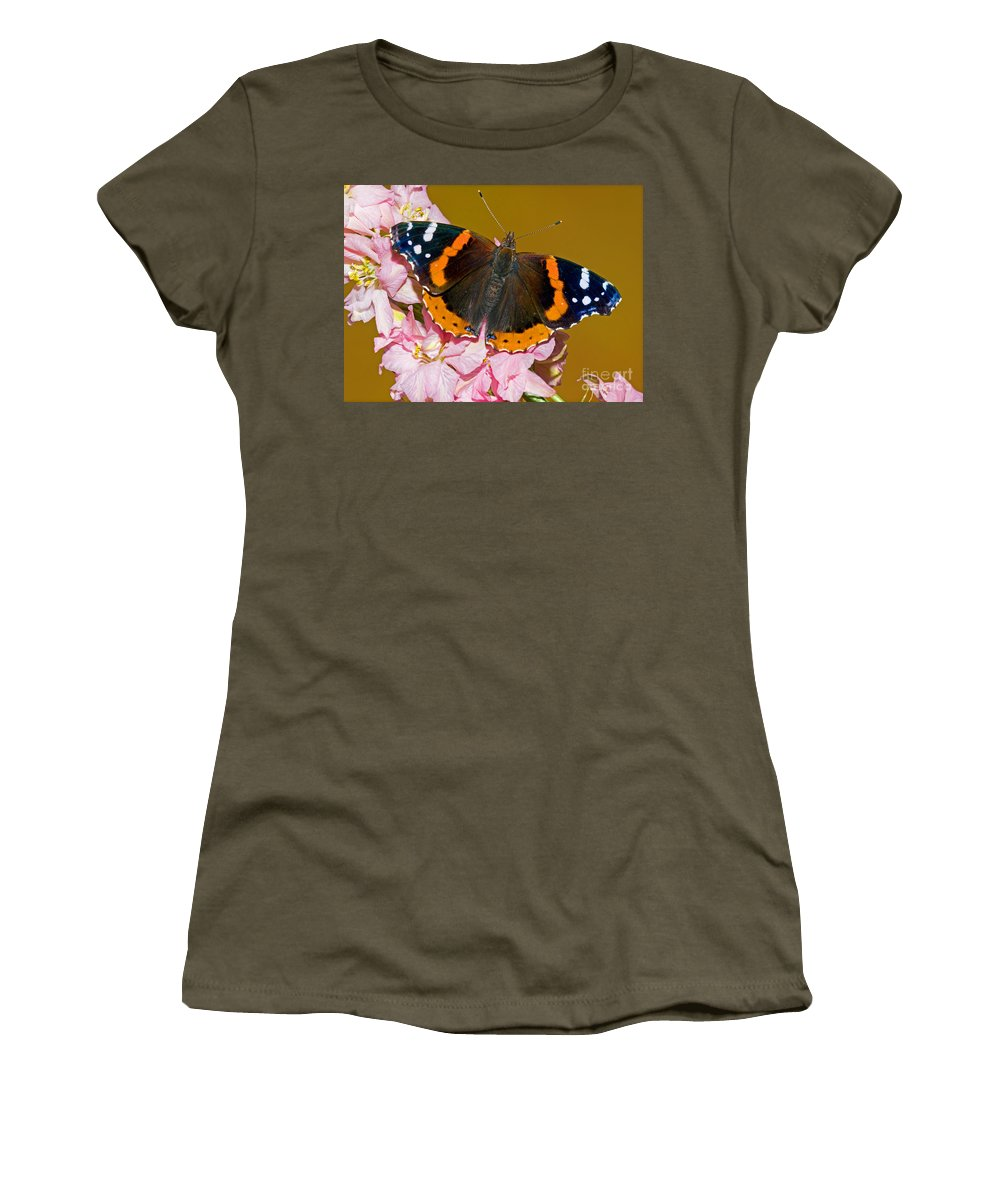 Animal Women's T-Shirt featuring the photograph Red Admiral Butterfly by Millard H. Sharp