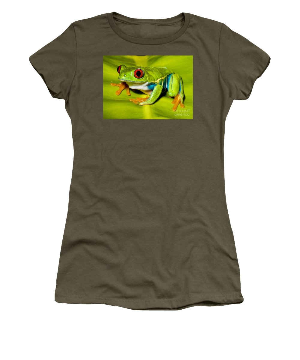Animal Women's T-Shirt featuring the photograph Red-eyed Treefrog by Millard H. Sharp