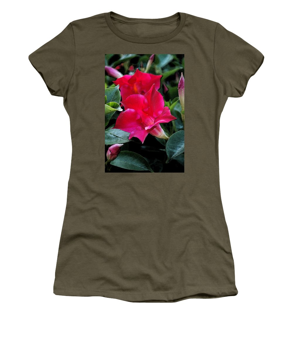 Flower Women's T-Shirt (Athletic Fit) featuring the photograph Red Flowers by Kathy Sampson