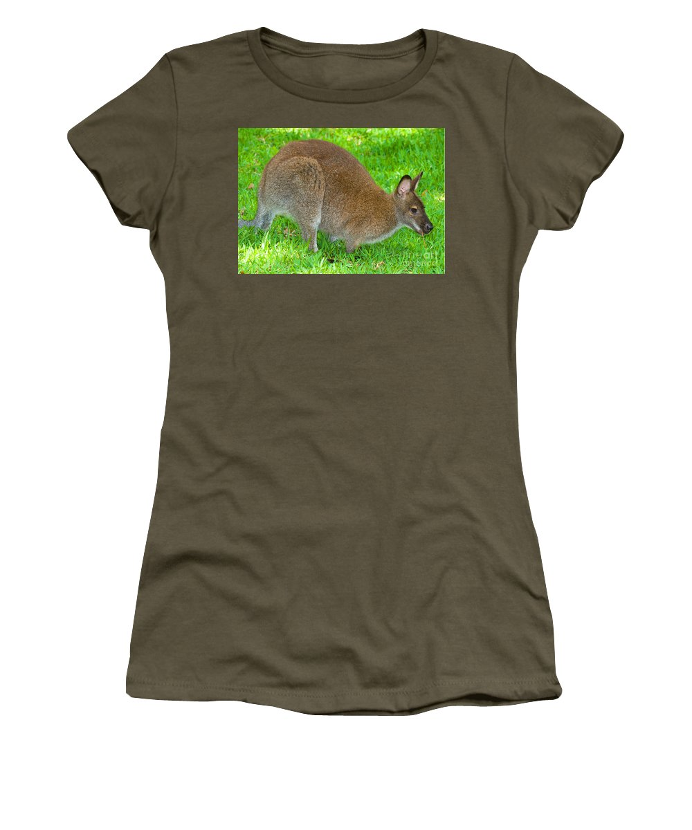 Nature Women's T-Shirt featuring the photograph Red Necked Wallaby by Millard H. Sharp