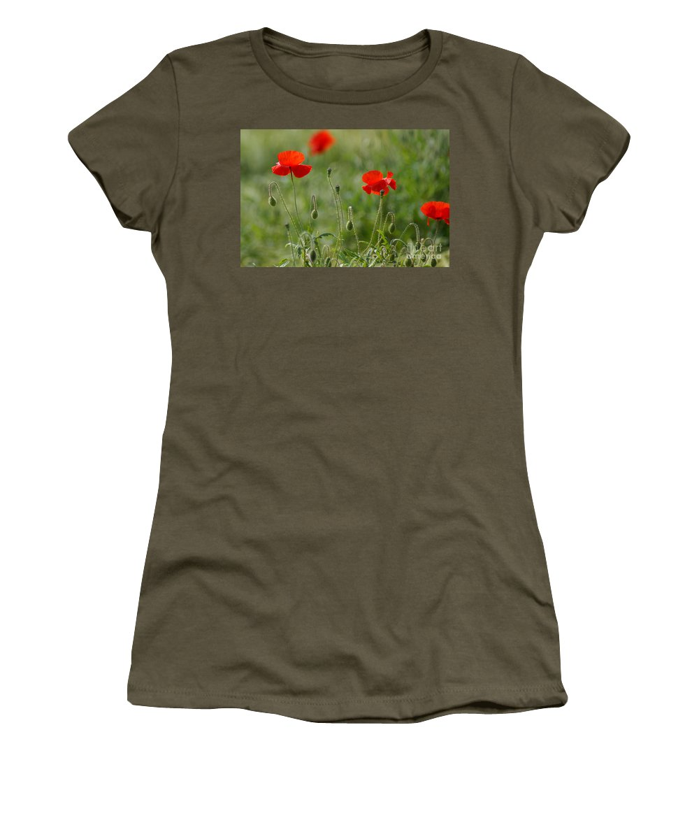 Poppies Women's T-Shirt featuring the photograph Red Poppies 2 by Carol Lynch