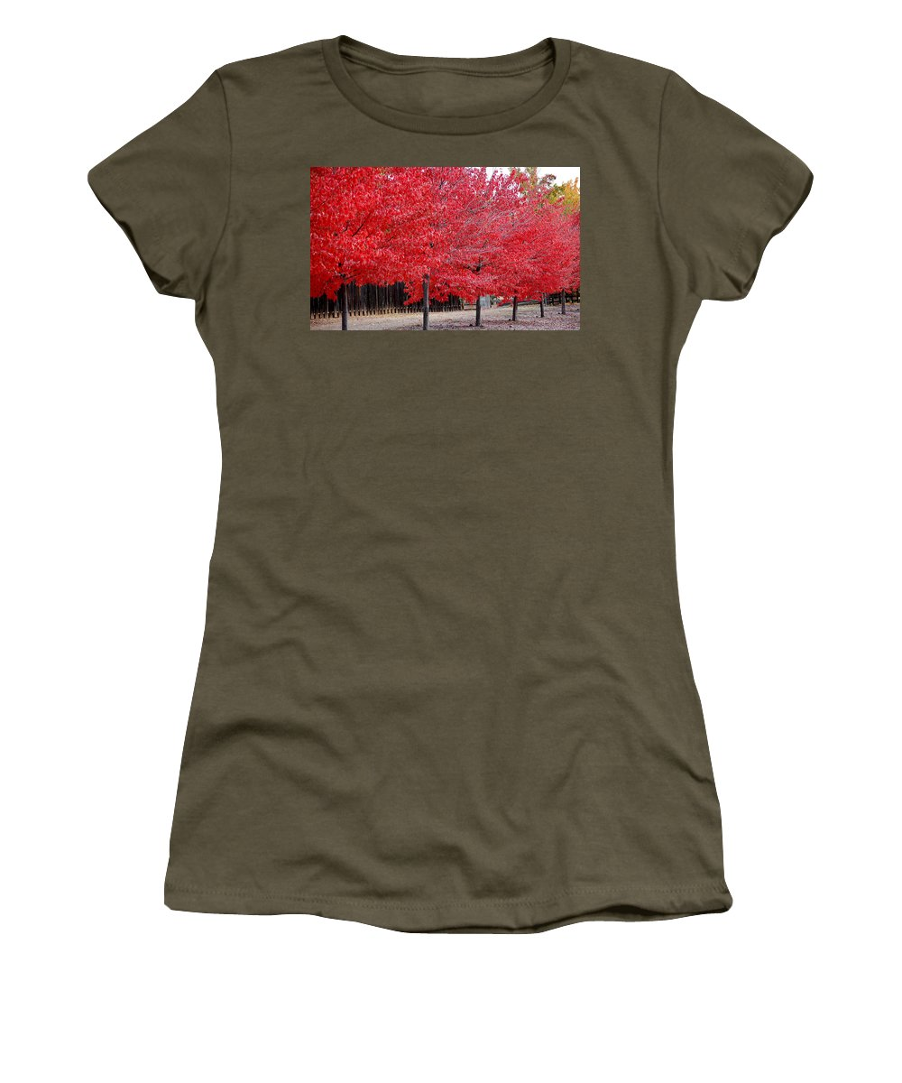 Red Leaves Leaf Tree Fall Colors Row Line Chico Ca Women's T-Shirt featuring the photograph Red Tree Line by Holly Blunkall