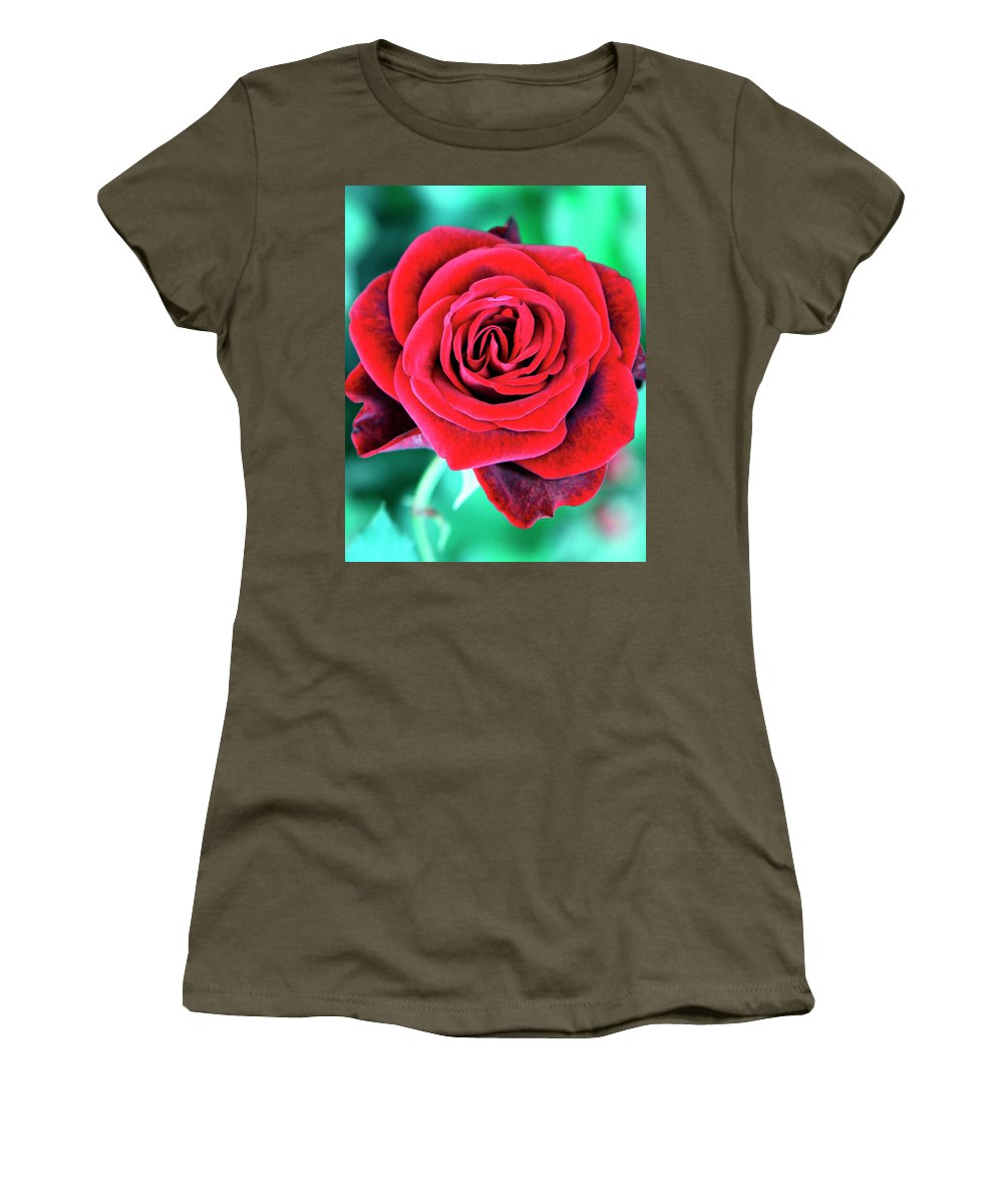 Rose Women's T-Shirt featuring the photograph Red Velvet Palm Springs by William Dey