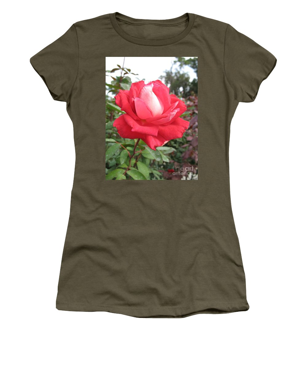 Rose Women's T-Shirt featuring the photograph Red-white Rose by Christiane Schulze Art And Photography