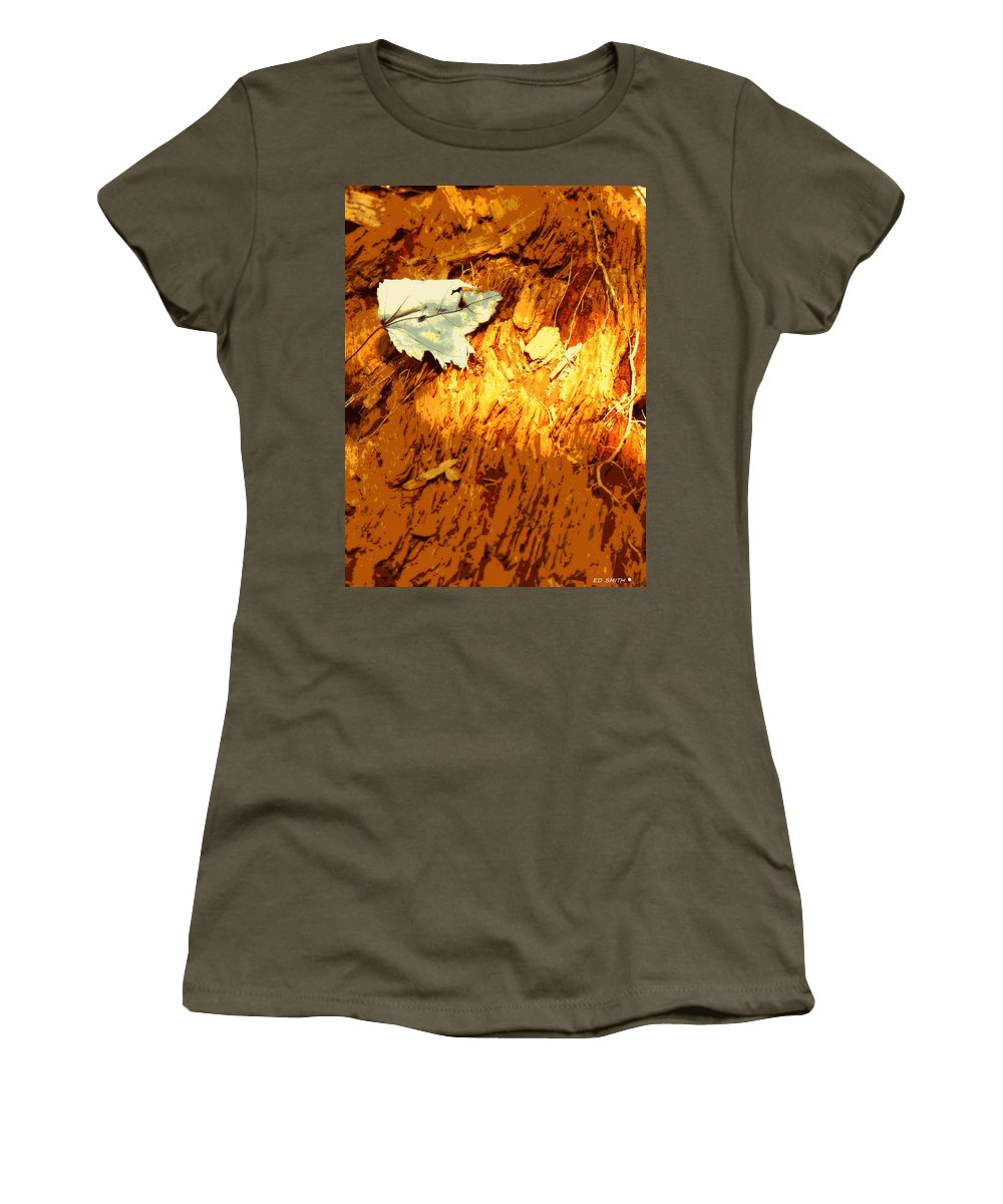 Redwood Women's T-Shirt featuring the photograph Redwood by Ed Smith