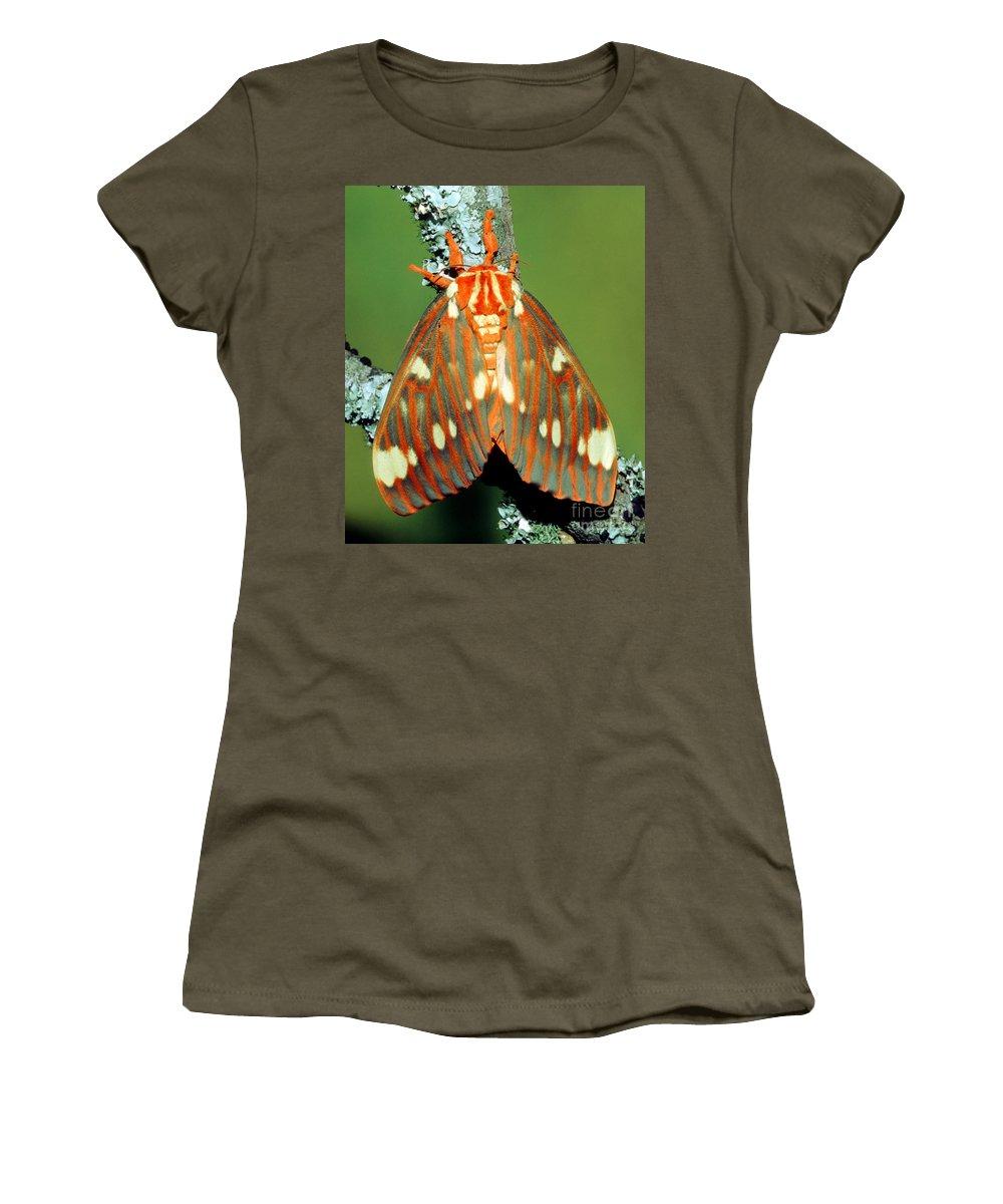 Animal Women's T-Shirt featuring the photograph Regal Moth by Millard H. Sharp
