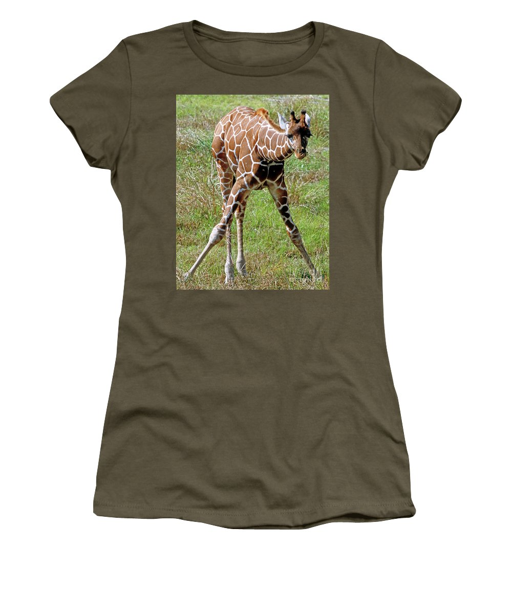Fauna Women's T-Shirt featuring the photograph Reticulated Giraffe by Millard H. Sharp