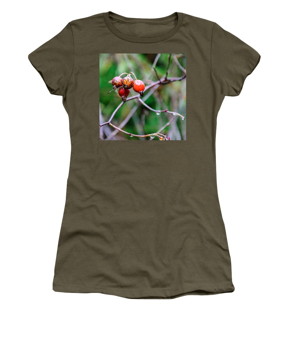 Rose Hip Women's T-Shirt featuring the photograph Rose Hip Wet by Roxy Hurtubise
