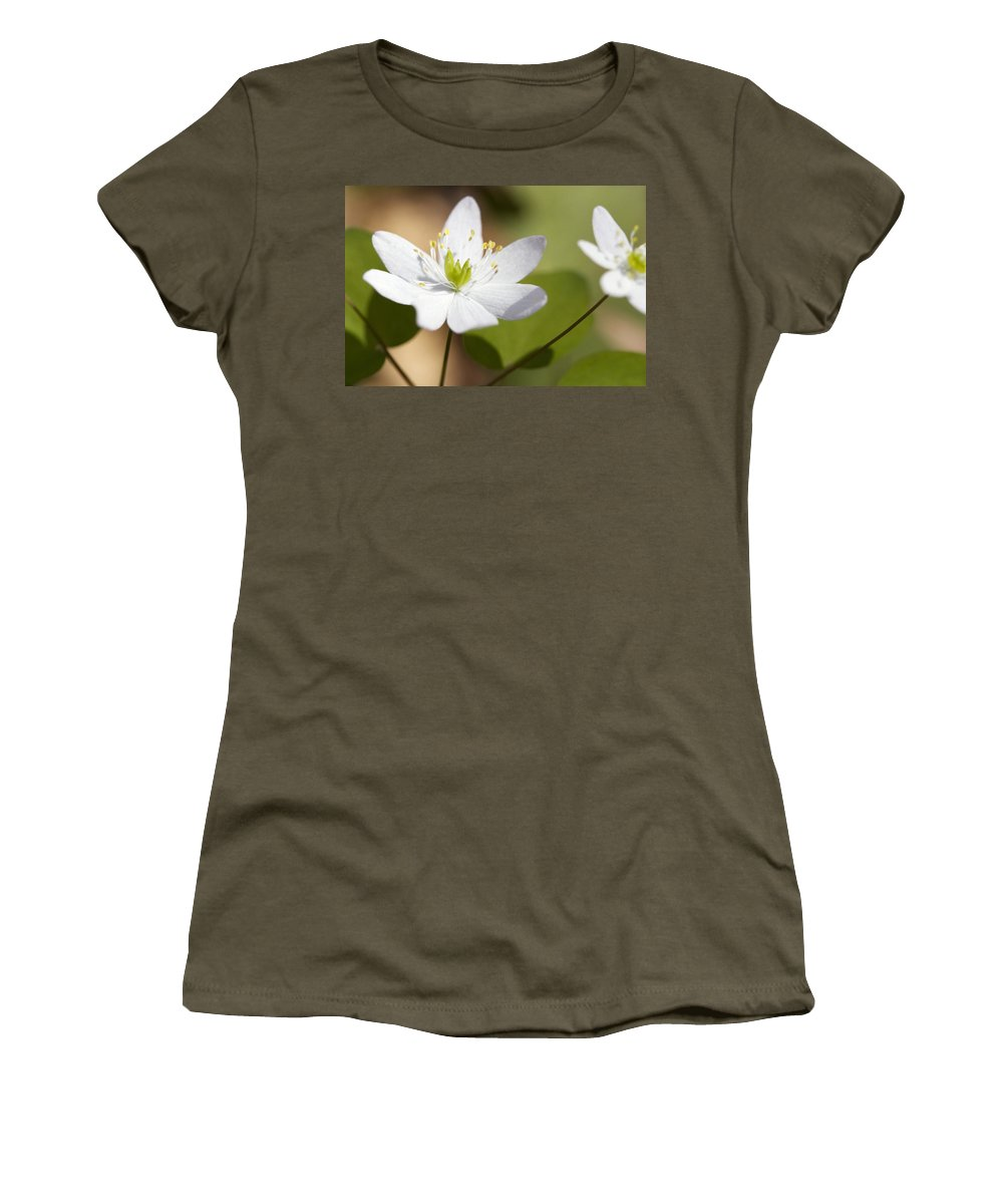 Rue Anemone Women's T-Shirt featuring the photograph Rue Anemone by Melinda Fawver
