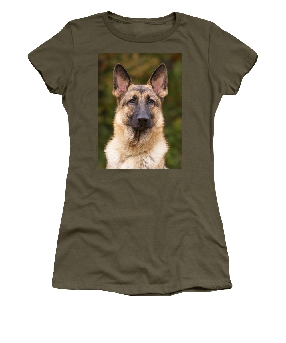 German Shepherd Women's T-Shirt (Athletic Fit) featuring the photograph Sable German Shepherd Dog by Sandy Keeton