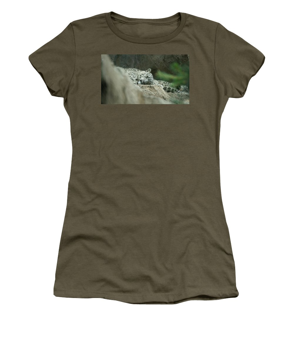 Cat Women's T-Shirt featuring the photograph Siesta by Crystal Harman
