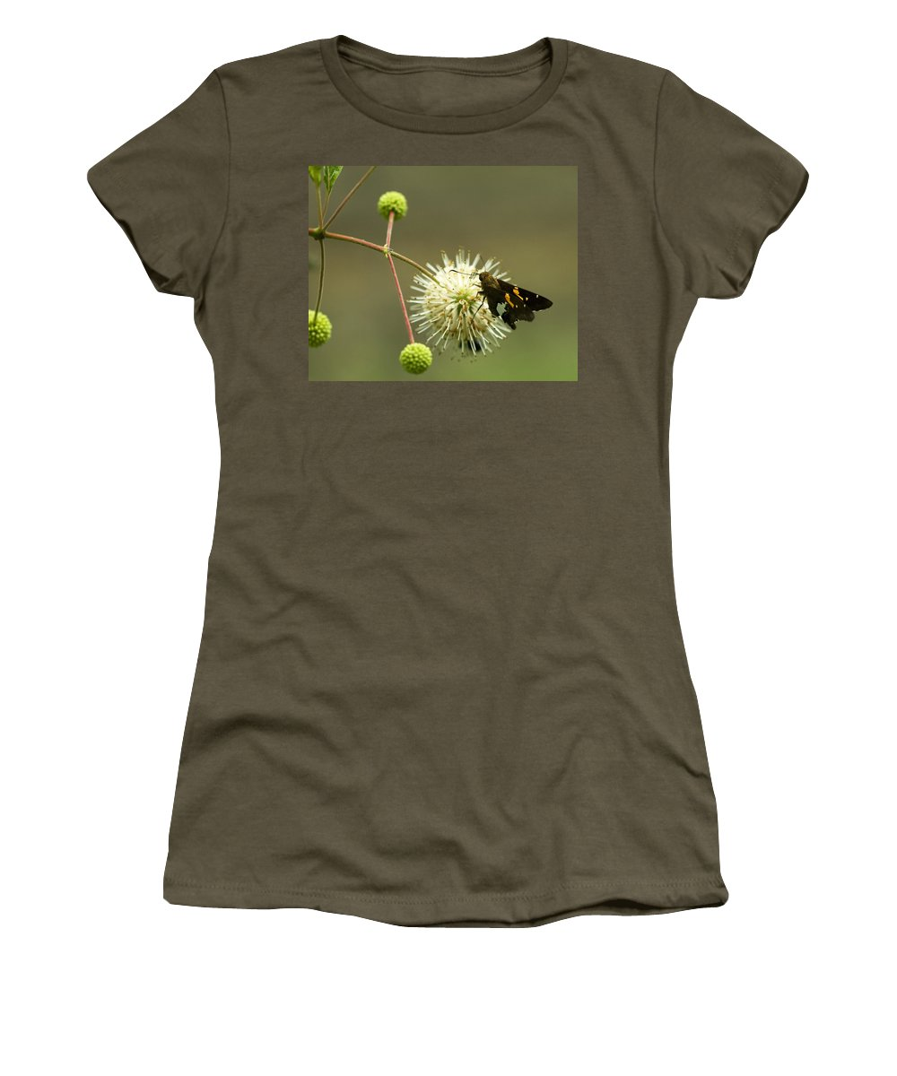 Silver Spotted Skipper Women's T-Shirt featuring the photograph Silver-spotted Skipper On Buttonbush Flower by Kathy Clark