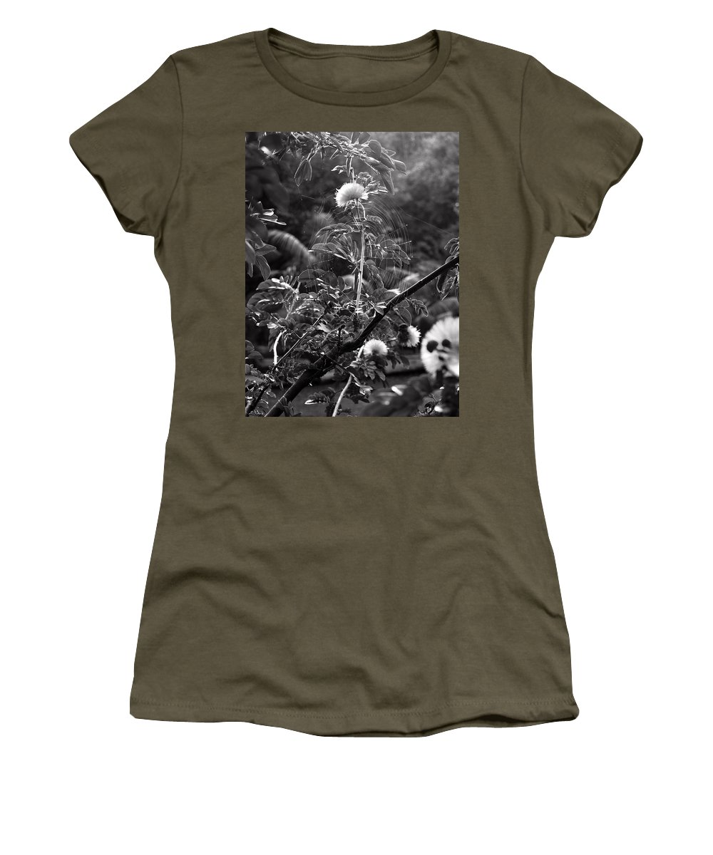 Flower Women's T-Shirt featuring the photograph Single Flower In A Spider Web by Jessica Foster