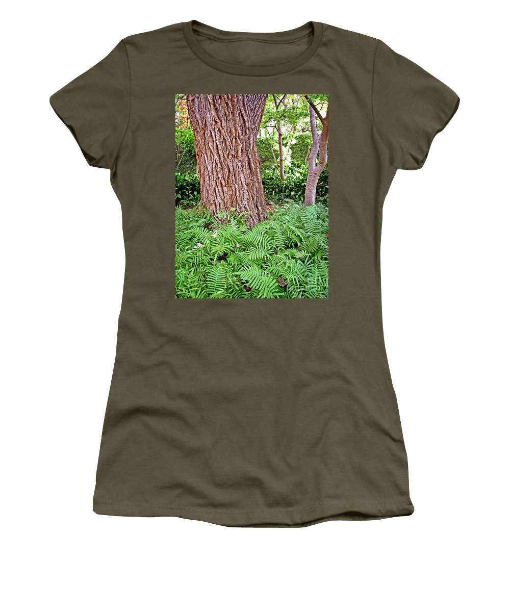 Nature Women's T-Shirt featuring the photograph Slippery Elm And Ferns by Earl Johnson