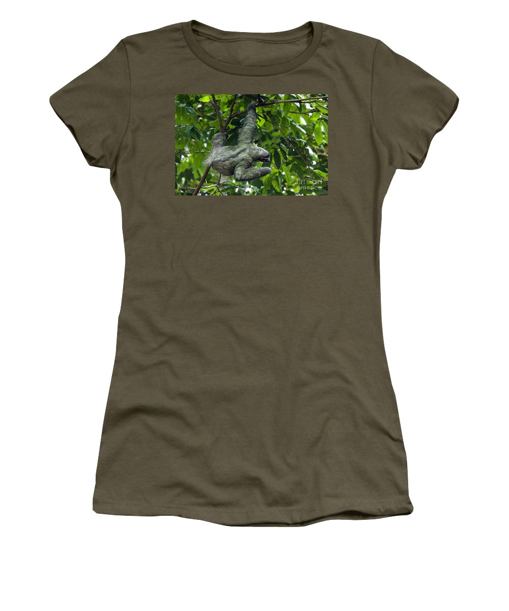 Three-toed Women's T-Shirt featuring the photograph Sloth 8 by Arterra Picture Library