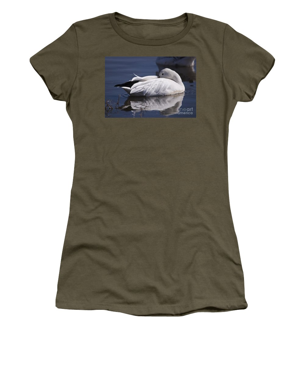 Snow Goose Women's T-Shirt (Athletic Fit) featuring the photograph Snow Goose by John Greco