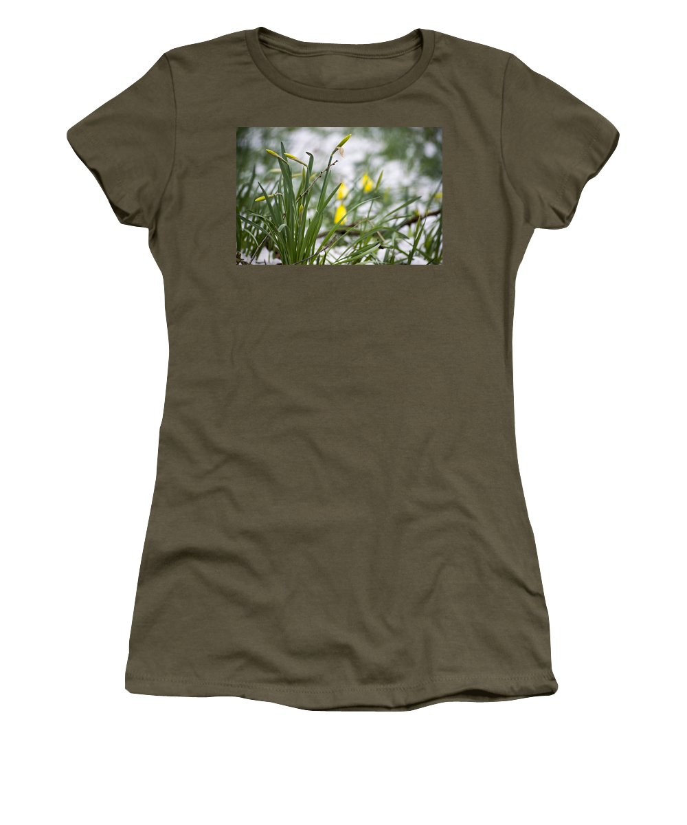 Daffodils Women's T-Shirt (Athletic Fit) featuring the photograph Snowy Daffodils by Spikey Mouse Photography