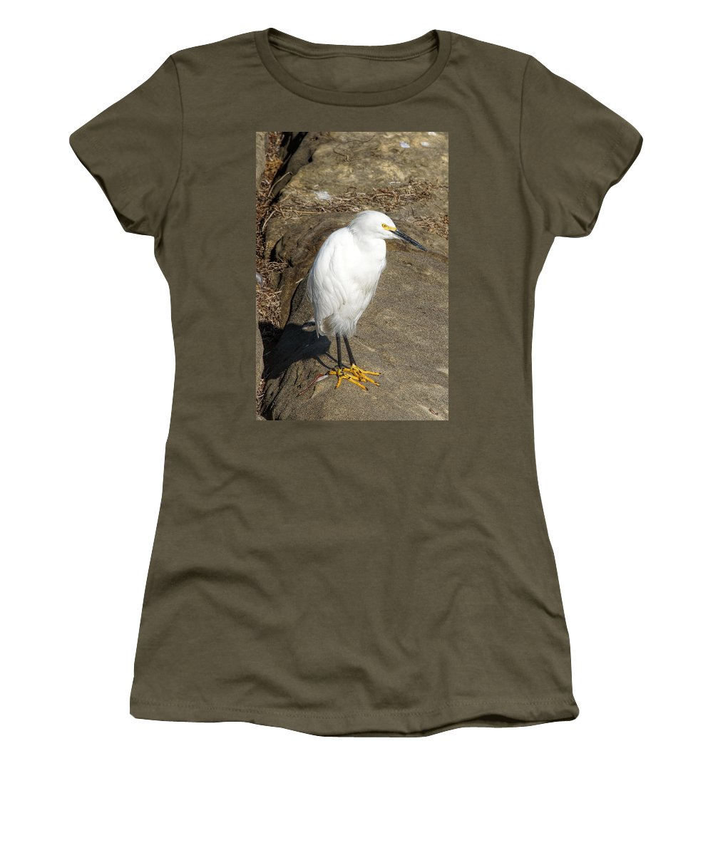 Snowy Egret Women's T-Shirt featuring the photograph Snowy Egret by Alan Hutchins