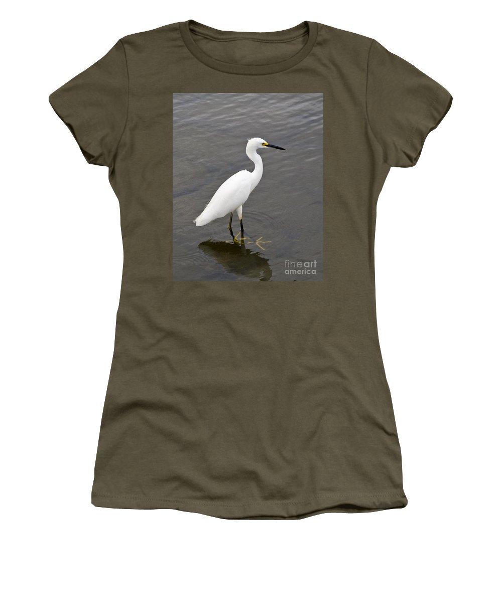 Snowy Women's T-Shirt featuring the photograph Snowy Egret Egretta Thula by Allan Hughes