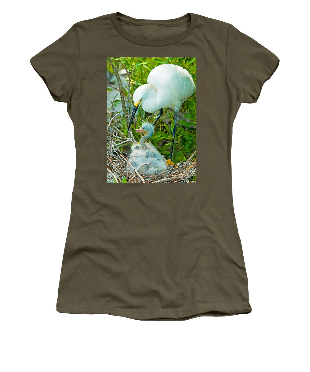 Fauna Women's T-Shirt featuring the photograph Snowy Egret Tending Young by Millard H. Sharp