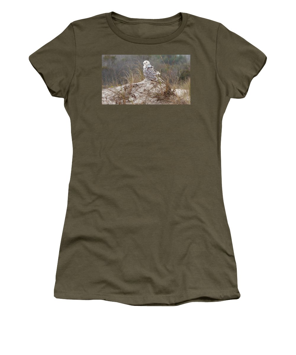 Snowy Owl Women's T-Shirt featuring the photograph Snowy Owl In Florida 14 by David Beebe