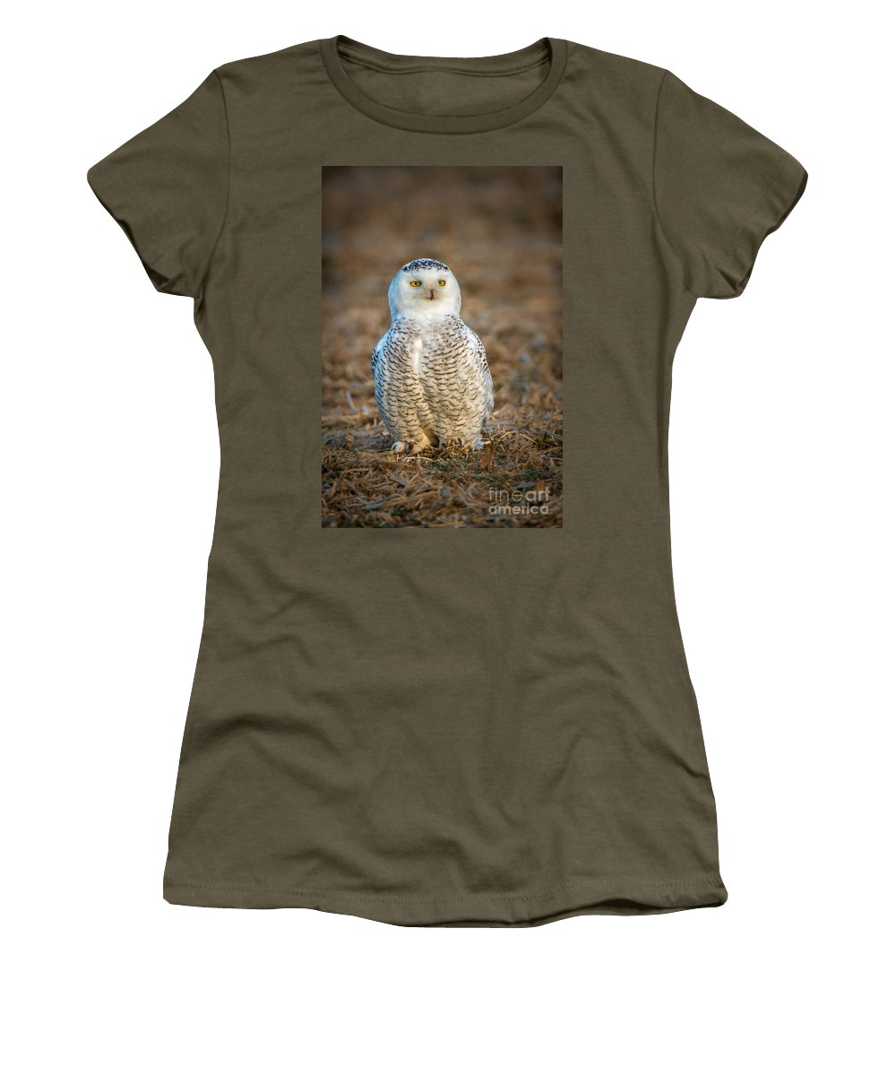 (by Weight) Women's T-Shirt (Athletic Fit) featuring the photograph Snowy Owl by Ronald Lutz