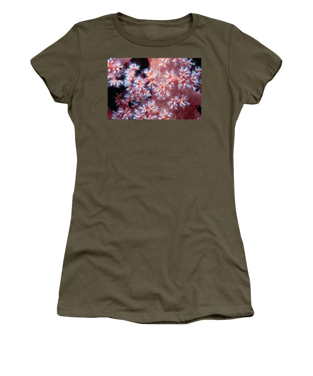 Micronesia Women's T-Shirt featuring the photograph Soft Corals 7 by Dawn Eshelman