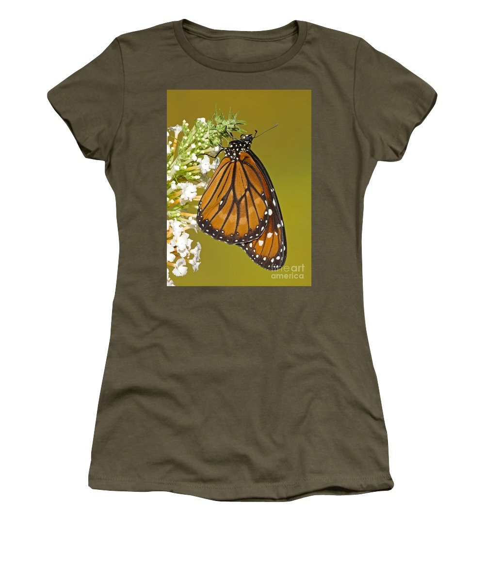 Animal Women's T-Shirt featuring the photograph Soldier Butterfly Danaus Eresimus by Millard H. Sharp