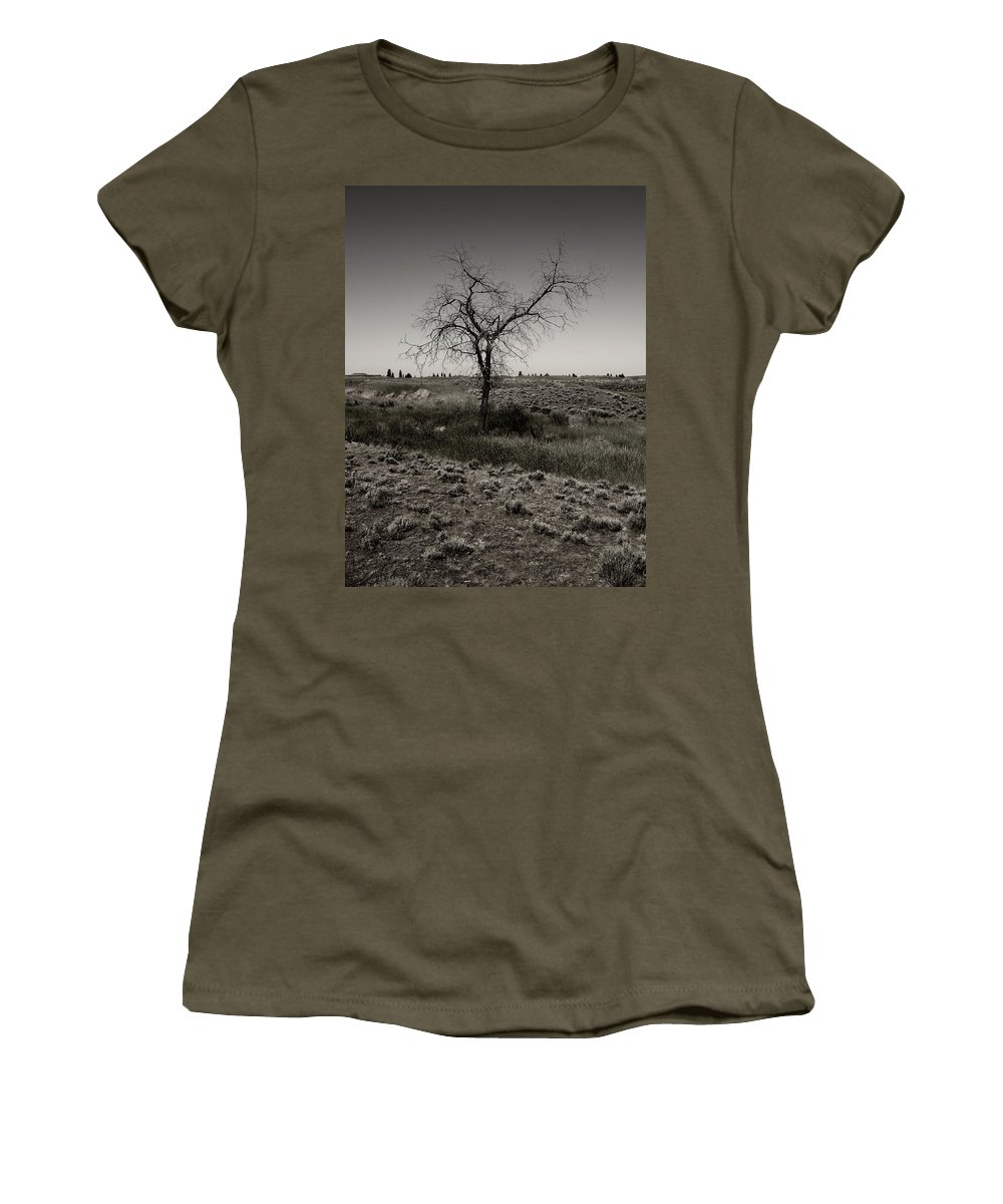Tree Women's T-Shirt featuring the photograph Solitary Tree by Daniel Hagerman