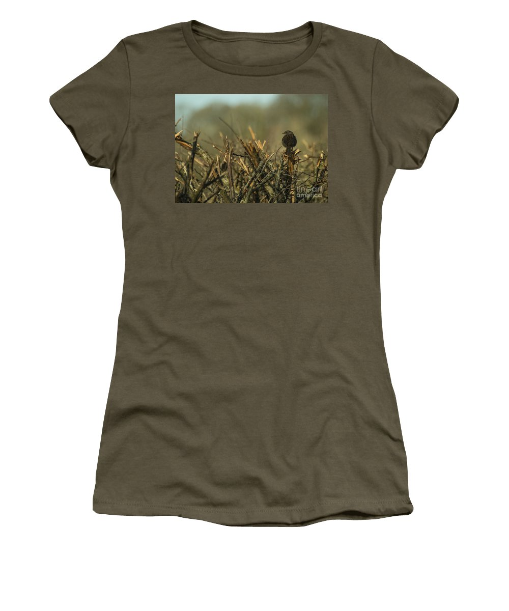 Sparrow Women's T-Shirt featuring the photograph Sparrow Watch by Rob Hawkins
