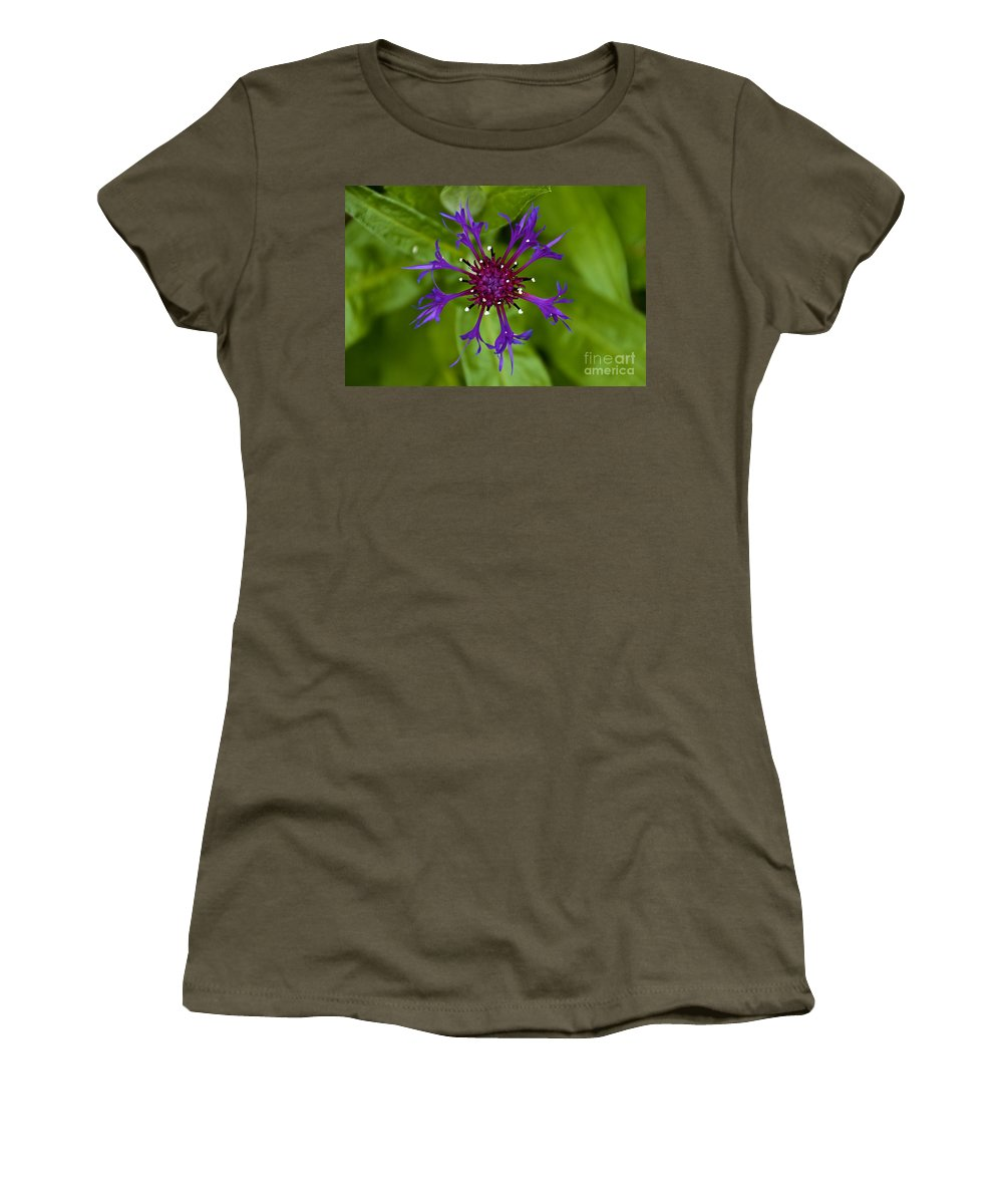 Blue Flower Women's T-Shirt featuring the photograph Spider Burst by William Norton