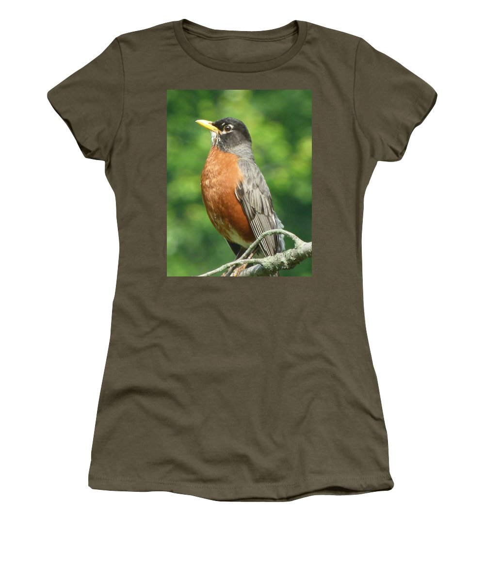Bird Women's T-Shirt featuring the photograph Spring Robin by Richard Bryce and Family