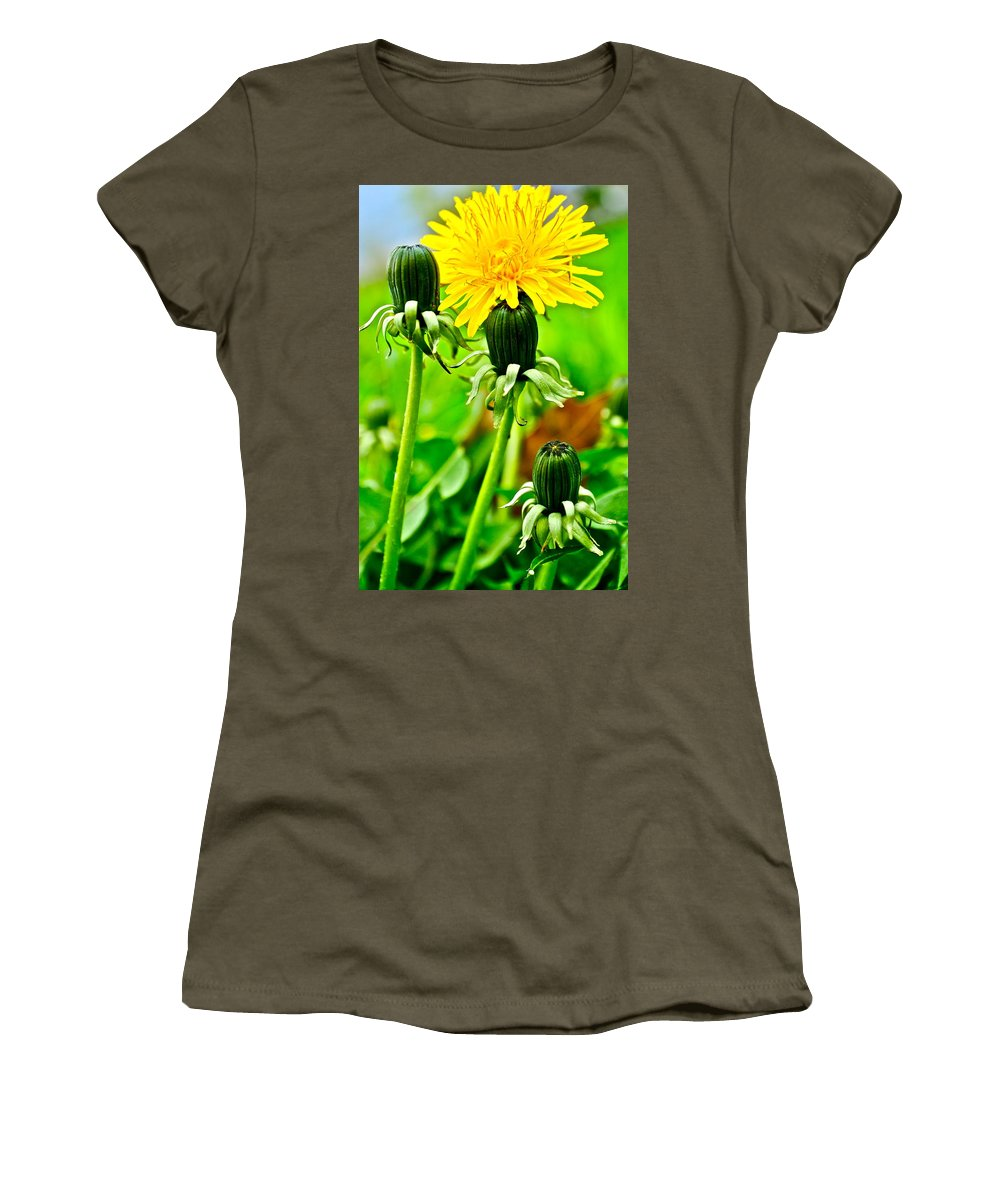 Golden Women's T-Shirt (Athletic Fit) featuring the photograph Standing Tall by Frozen in Time Fine Art Photography
