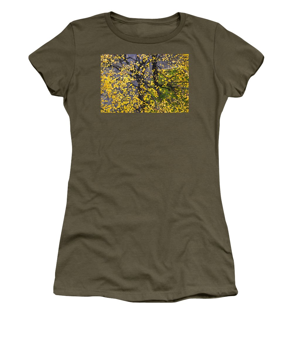 Abstract Women's T-Shirt featuring the photograph Starry Tree by Alexander Senin
