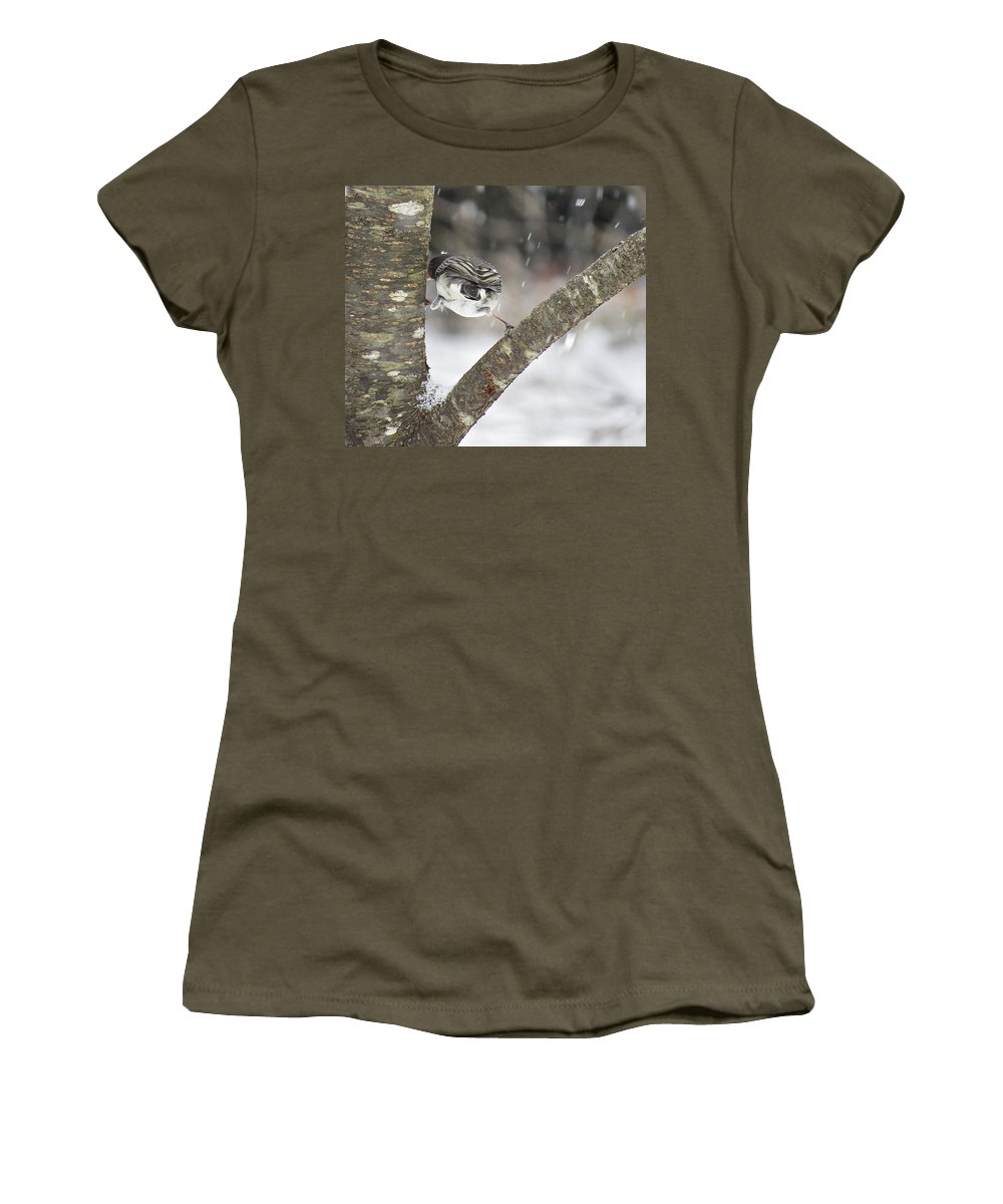 Dark-eyed Junco Women's T-Shirt featuring the photograph Stretched by MTBobbins Photography