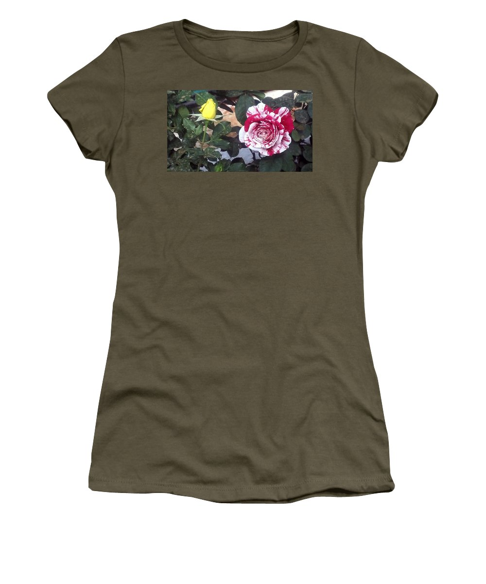 Striped Rose And Yellow Women's T-Shirt featuring the painting Striped Rose And Yellow by Usha Shantharam