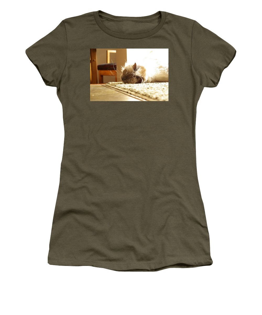 Cat Women's T-Shirt featuring the photograph Sunny Jack by Cindy Johnston