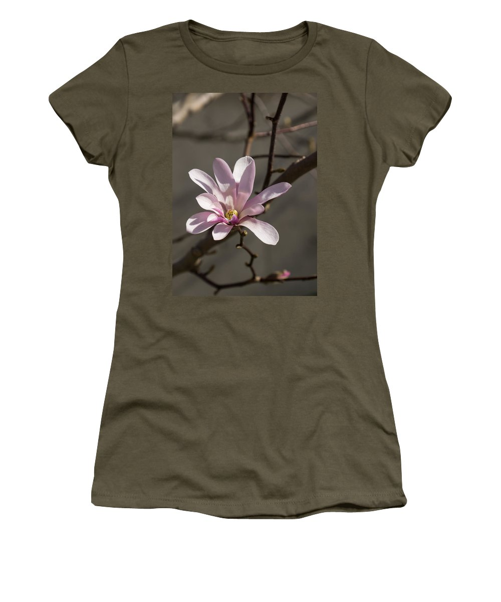 Magnolia Women's T-Shirt featuring the photograph Sunny Pink Magnolia Blossom by Georgia Mizuleva