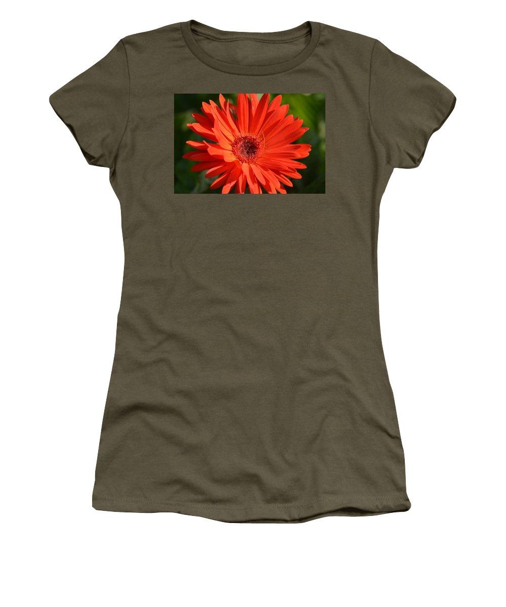 Sunshine Gerber Women's T-Shirt featuring the photograph Sunshine Gerber by Maria Urso