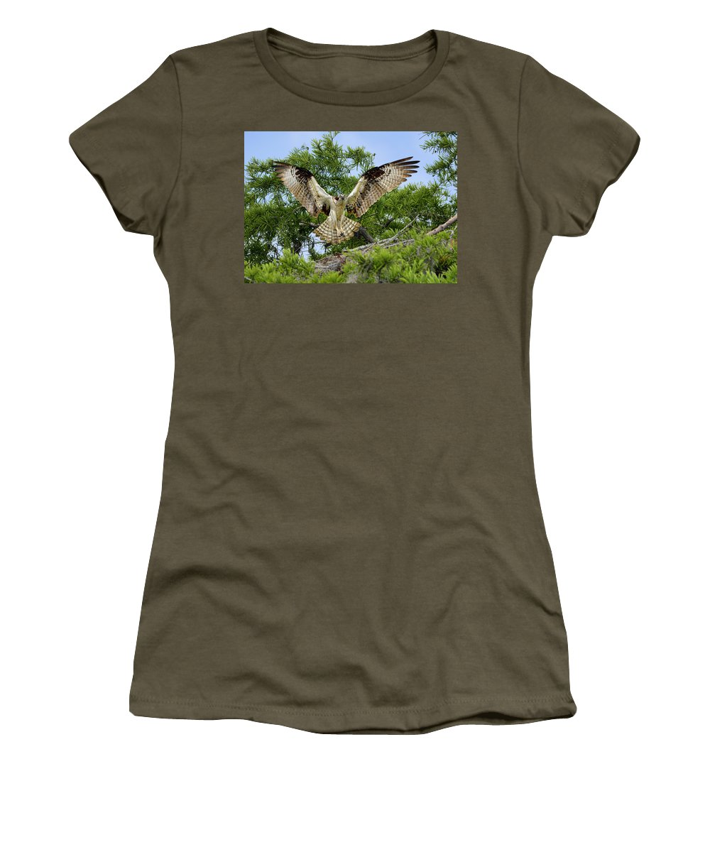 Dodsworth Women's T-Shirt featuring the photograph Surprise by Bill Dodsworth
