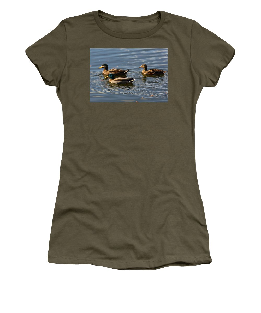 Duck Women's T-Shirt featuring the photograph Swimming Mallards by Denise Mazzocco