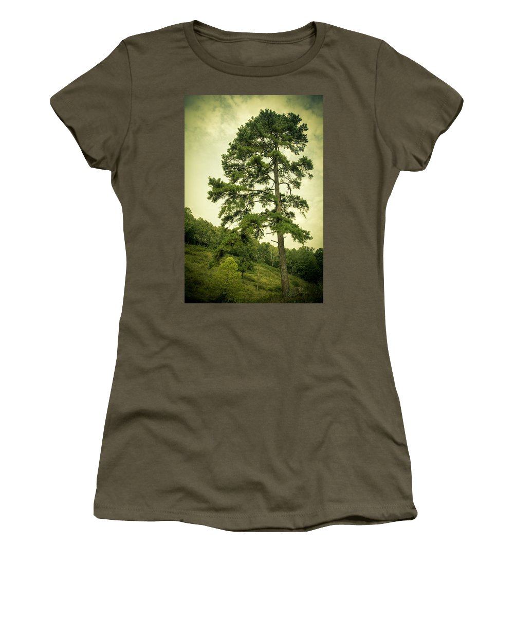 Tree Women's T-Shirt featuring the photograph Tall Tree by Shane Holsclaw