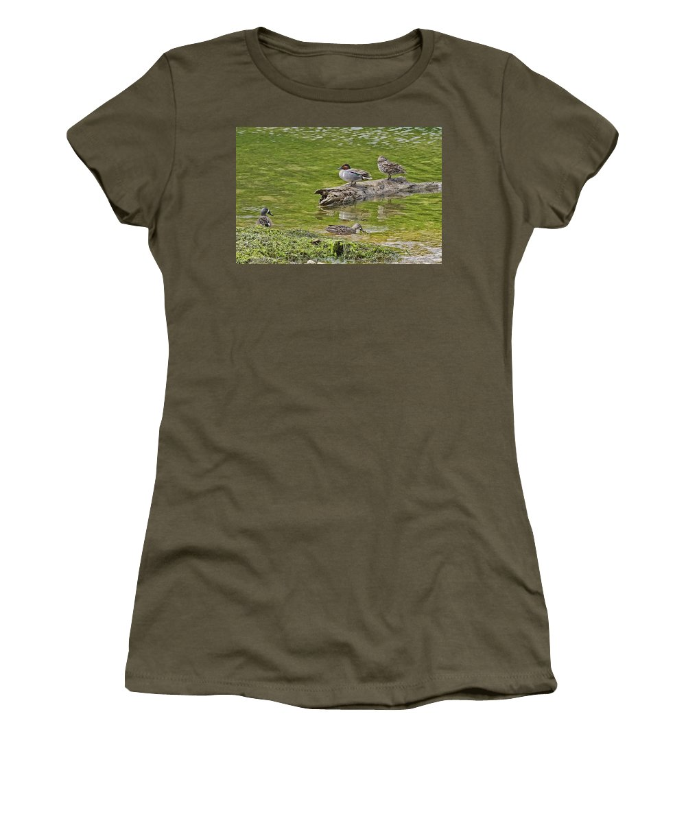 Blue-winged Teal Women's T-Shirt (Athletic Fit) featuring the photograph Teal Family Gathering by Gary Holmes