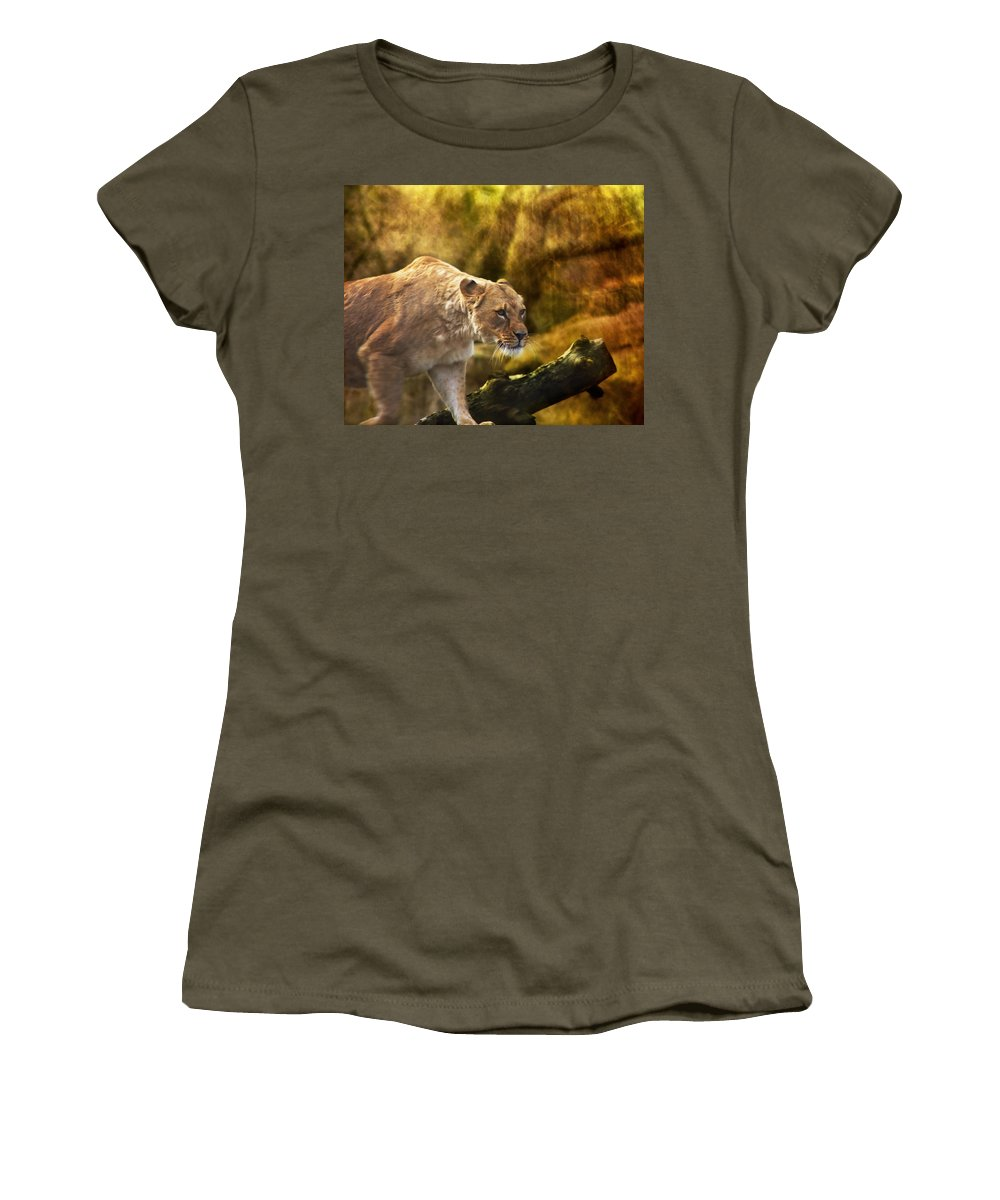 Animal Women's T-Shirt featuring the photograph The Approach by Belinda Greb