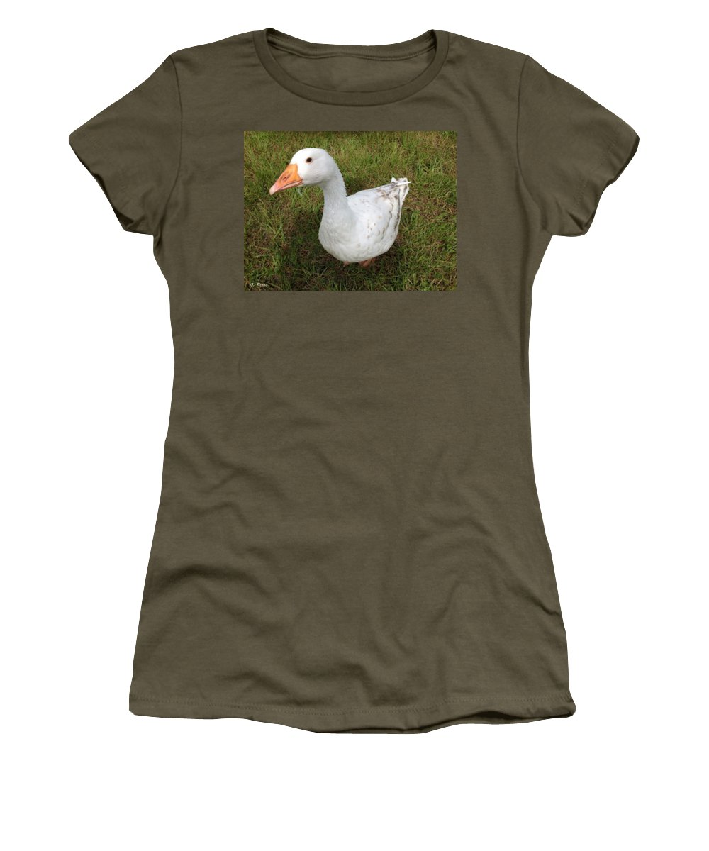 Goose Women's T-Shirt featuring the painting The Inquisitive Goose by George Pedro