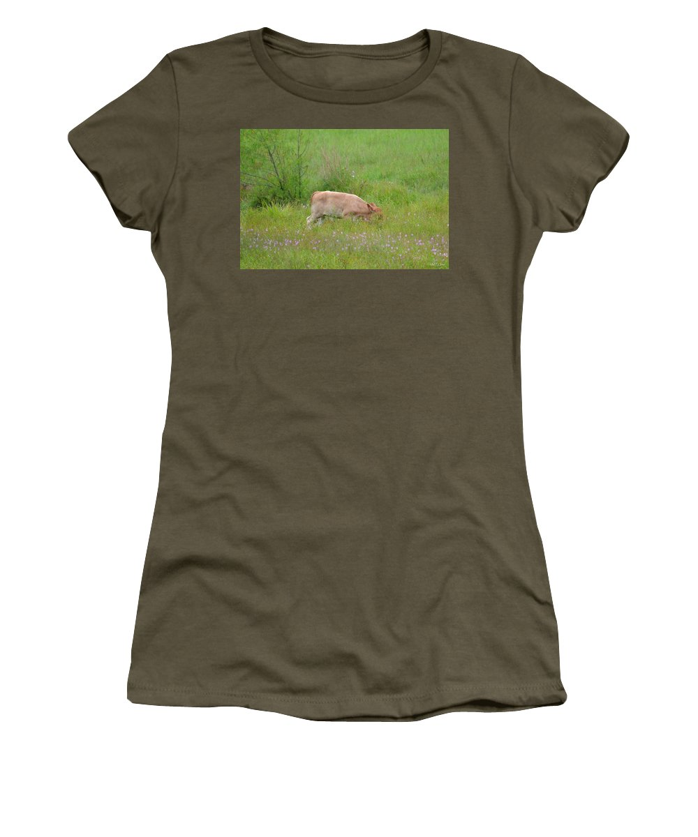 Baby Calf Women's T-Shirt featuring the photograph The Little Grazer by Maria Urso