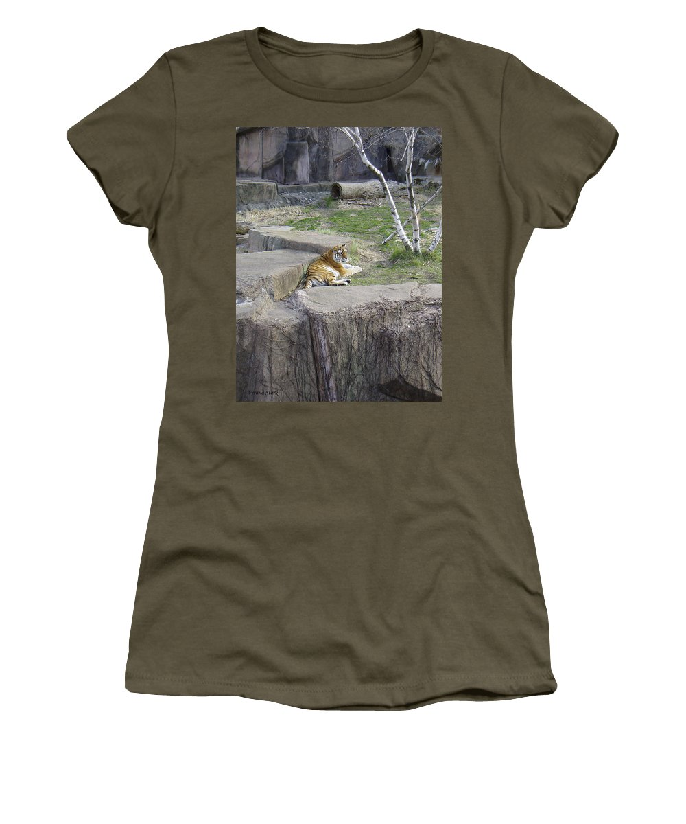 Tiger Women's T-Shirt featuring the photograph The Lounging Tiger 1 by Verana Stark