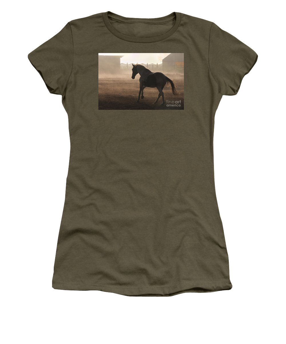 Horse Women's T-Shirt featuring the photograph The Morning Light by Angel Ciesniarska