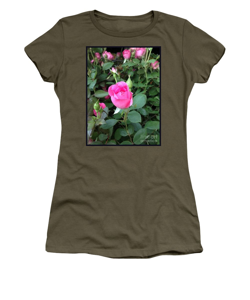 The Perfect Pink Rose Canvas Print Women's T-Shirt (Athletic Fit) featuring the photograph The Perfect Pink Rose 2 by Becky Lupe